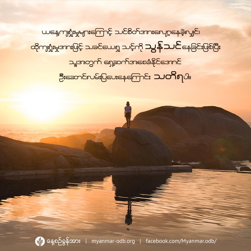 share_odb_2019-07-27-mm