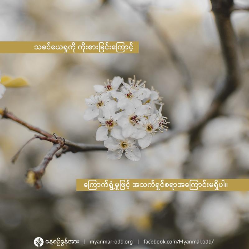 share_odb_2020-06-05-mm